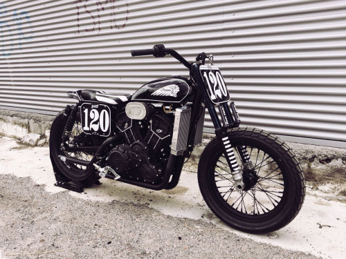 ANVIL_shrimp_indian_scout_tracker_BIGS_02